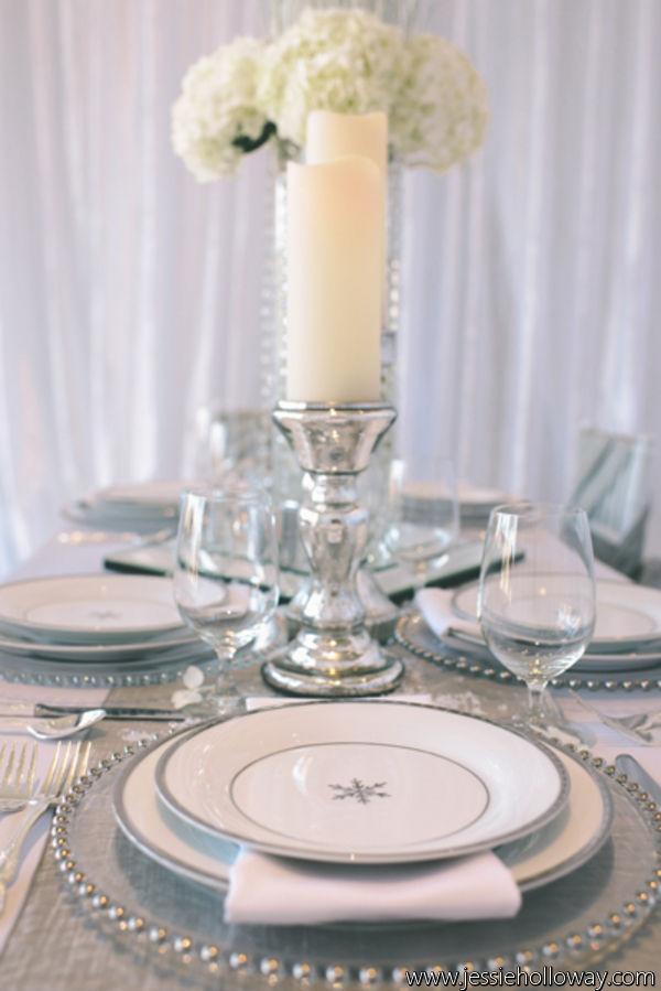 Southern Events Party Rental, Winter Wonderland Wedding Inspiration, JessieHolloway (1)