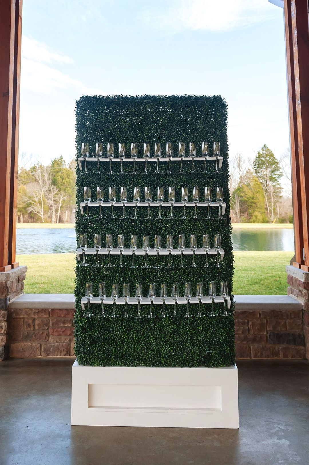 champagne box hedge wall display